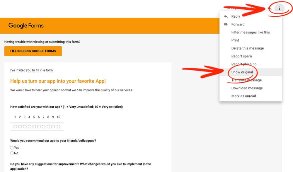 Google Form Survey